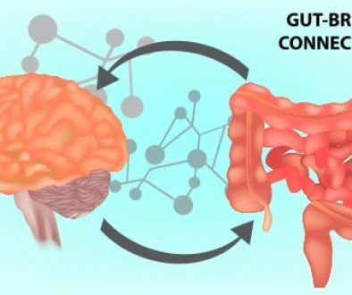 blog-gut-brain-connection